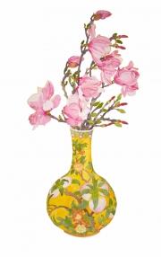 January Magnolia