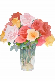 Soft Focus Roses
